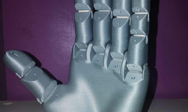 Main articulée